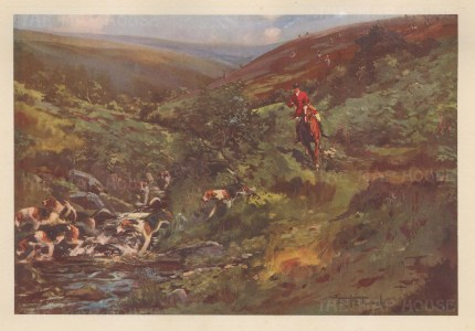 Stag Hunting: Devon and Somerset Staghounds. Down the Water at Nutscale, Exmoor