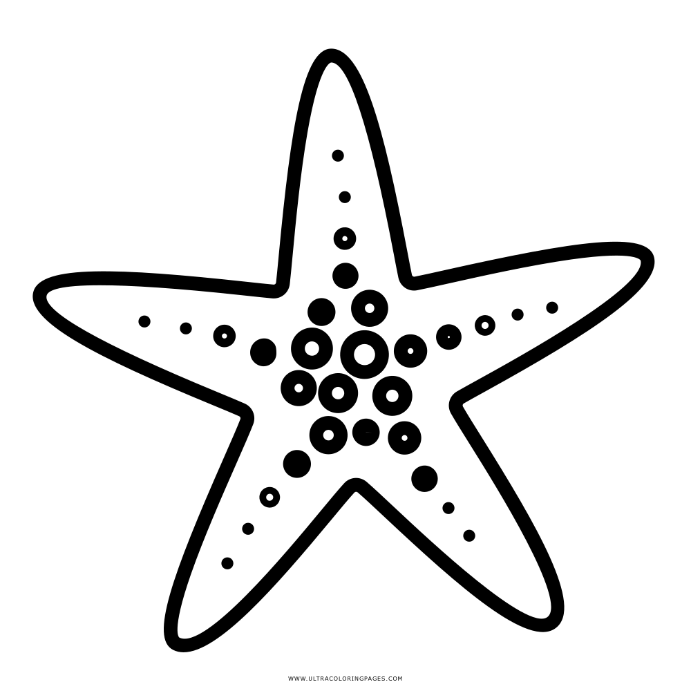 Starfish Coloring Page Ultra Coloring Pages