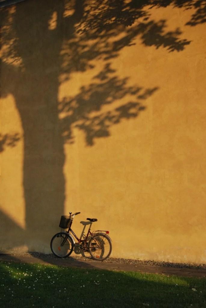 bike, grass, wall