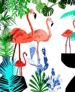 flamingo_smail
