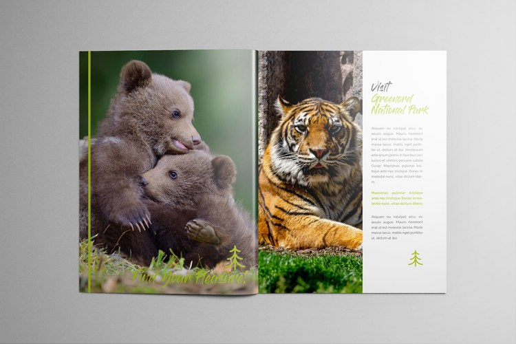 Stapled Colour Brochure Printing