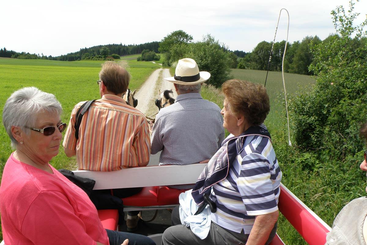 Kutschenfahrt am Prinzenhof