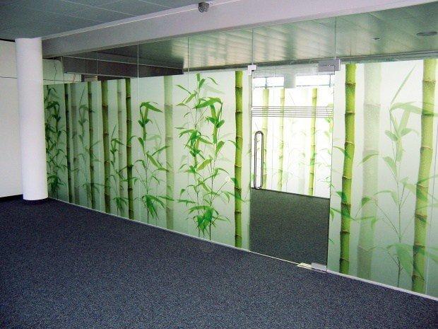 Дверь из стекла триплекс с рисунком