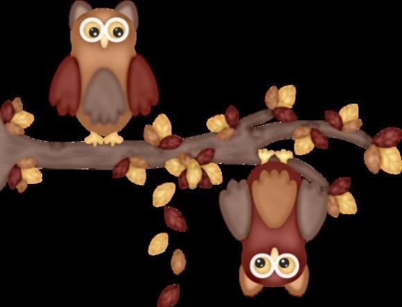 Owls on tree branch