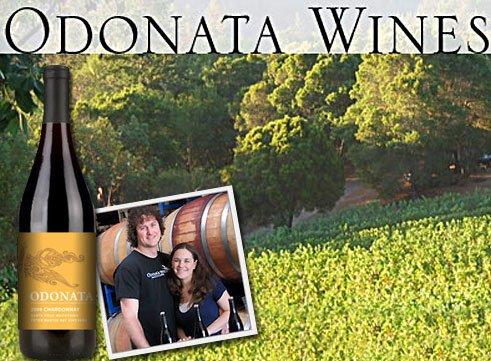 odonata_wines