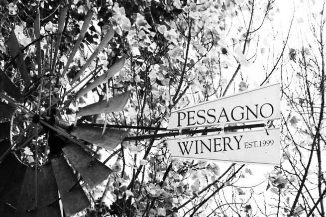pessagno-winery