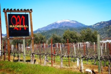 Madrigal Sign and Mt St. Helena Snow