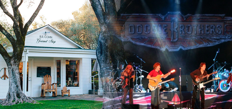 Wineries for Foodies & Rock & Rollers