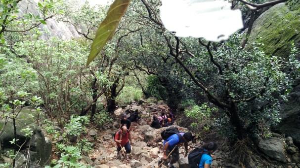 The rocky trail upwards