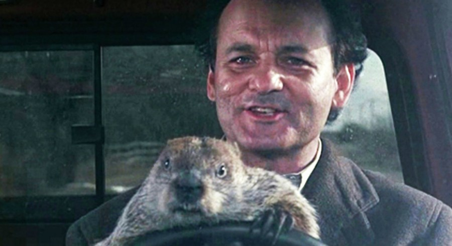 phil connors groundhog day