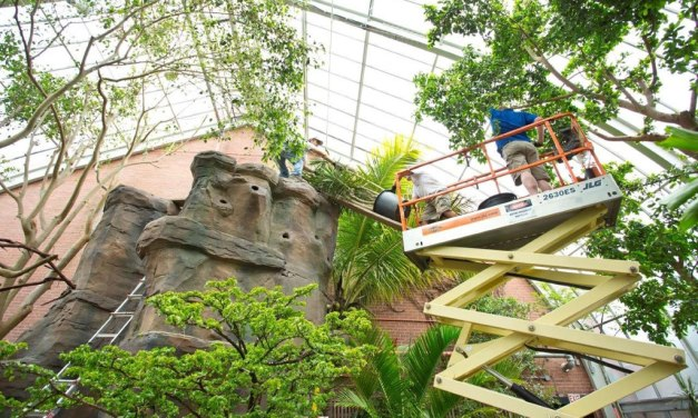Starphire glass enhances UV transmittance, vegetation in renovated Tropical Rainforest