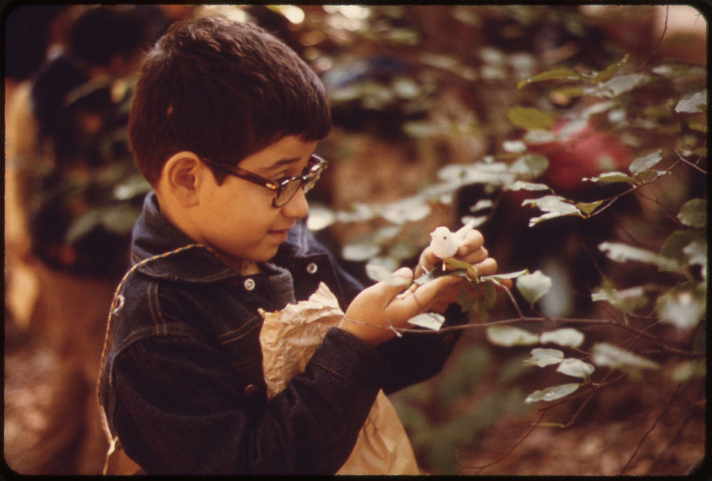 Childhood Development – Nature is critical in children's formative years. Studies show that nature provides children with a buffer against life's stresses, and enables them to form social bonds. A study of daylighting in schools also showed that children learn 20-26% faster in natural daylight. – Wells & Evans, 2003; Heschong, 2003 Photo courtesy of the US EPA