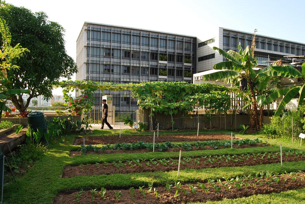 Khoo Teck Puat Hospital. Credit: Bill Browning