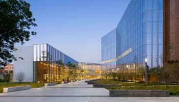 SAS' new office designed by Perkins and Will opens on