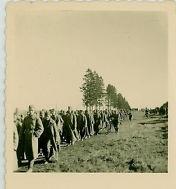 prisonniers de guerre en route pour la captivité