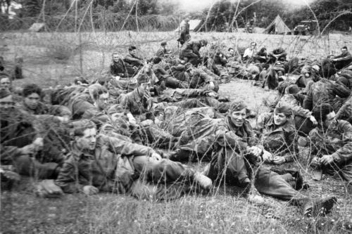 prisonniers de guerre allemands prisonniers en normandie