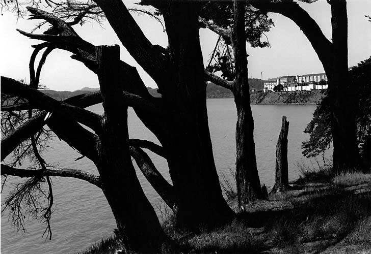 Bayside View, San Quentin, California. Herman Krieger
