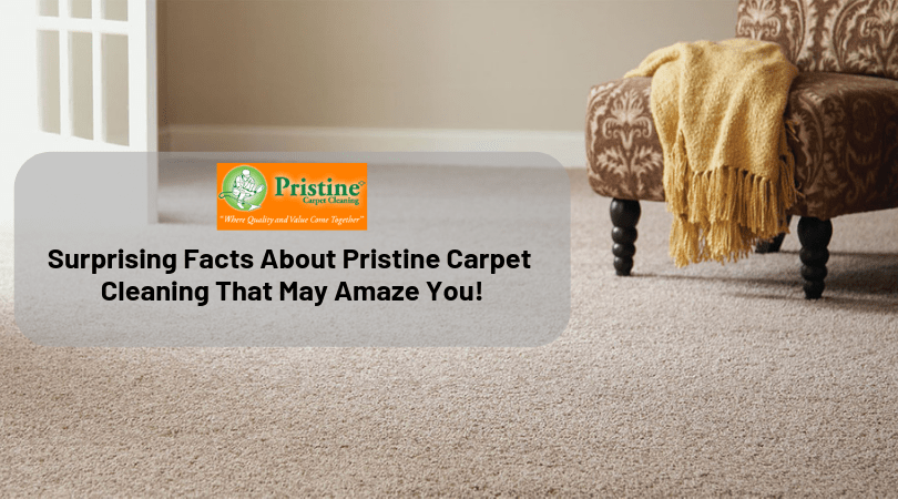 surprising facts about pristine carpet cleaning that may amaze you
