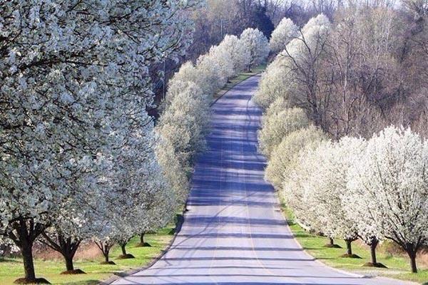 Красивая и удивительная природа земли - смотреть фото и ...