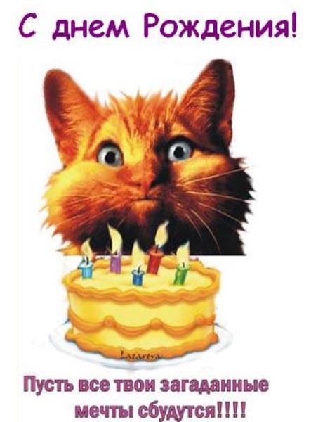 Поздравления С Днем Рождения - картинки, красивые, забавные