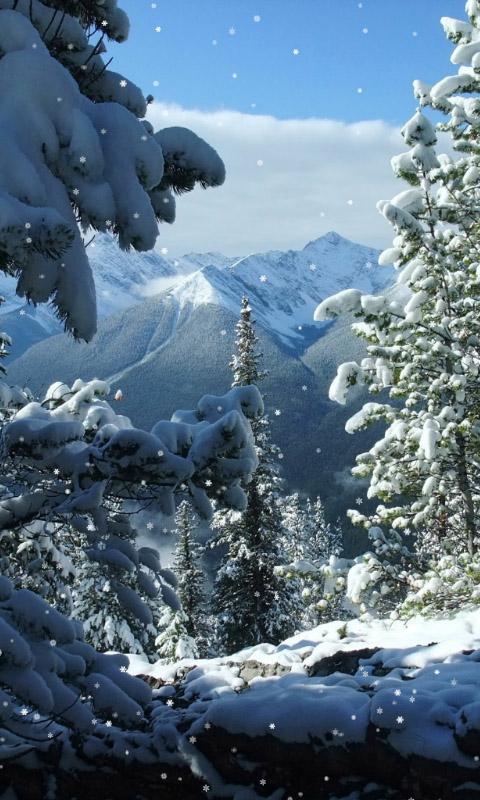 Красивые и красочные картинки зимы на телефон на заставку