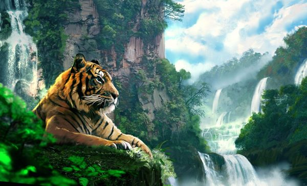 Картинки на рабочий стол тигр - лучшие обои