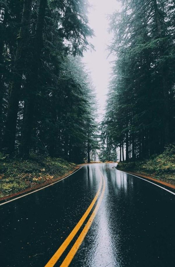 Красивые и прикольные картинки для Айфона - подборка