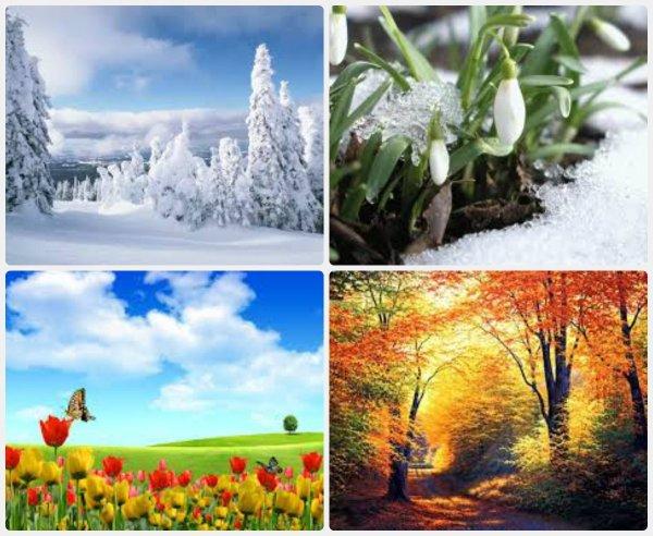 Времена года зима весна лето осень - картинки