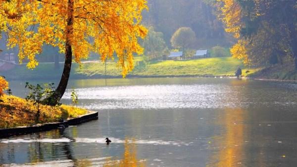 Красивое фото осени на рабочий стол Россия пейзажи