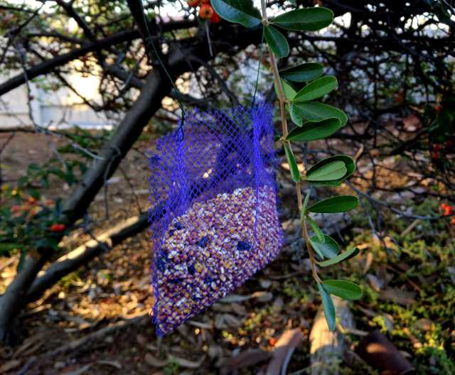 Mesh Bag Bird Feeder