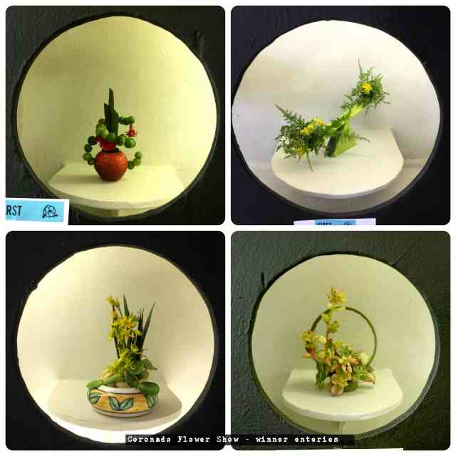 miniature succulent design
