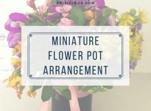 miniature flower pot arrangments