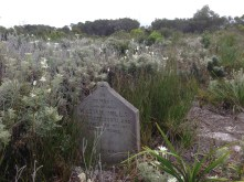 Many early arrivals died of disease and were buried at North Head