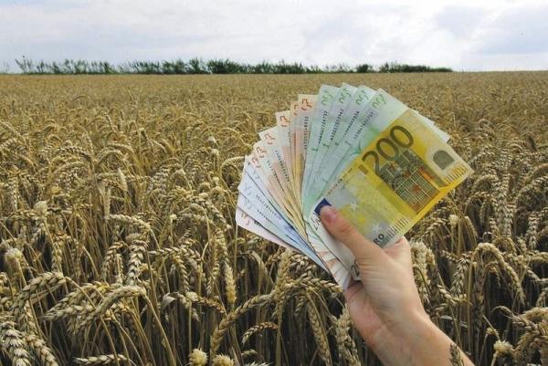 Poljoprivreda Novac