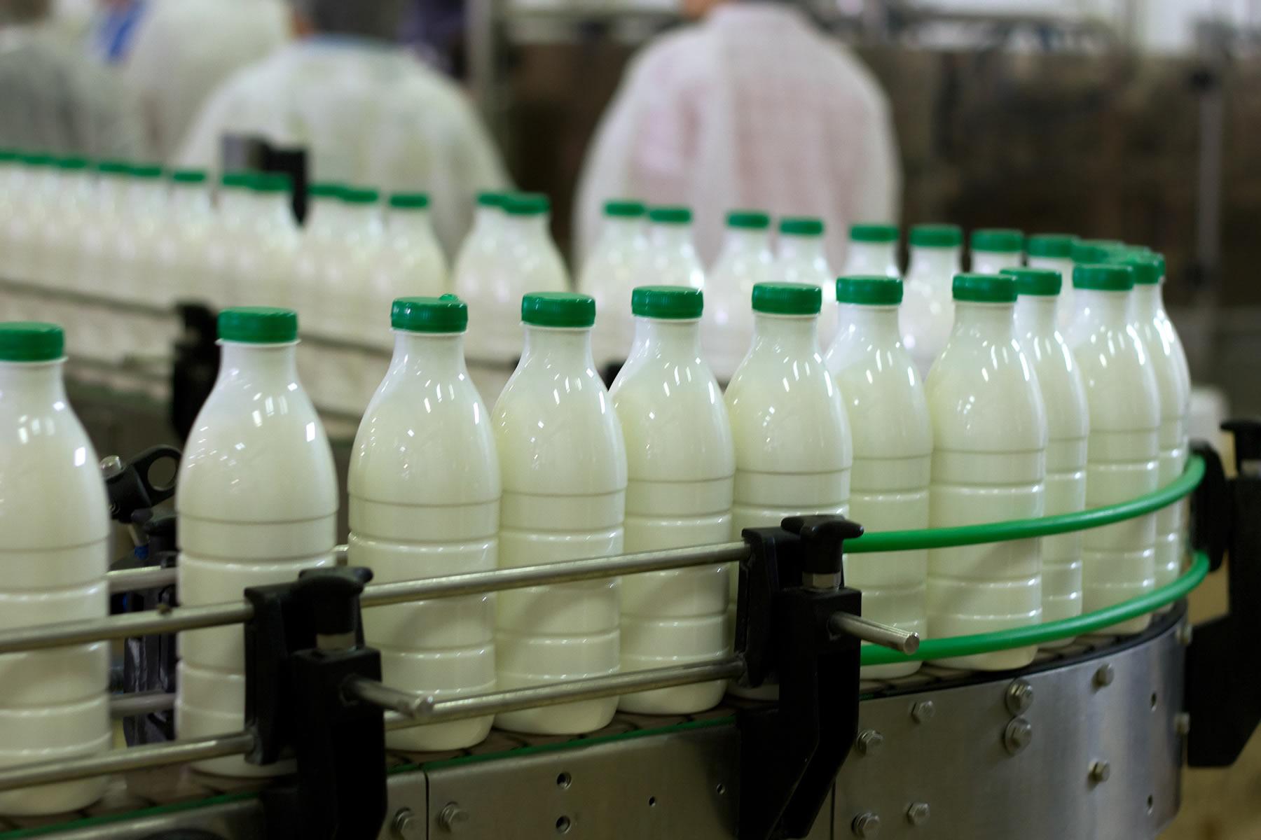 Milk Factory1