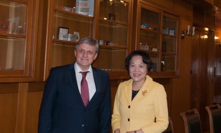 Ambasadorica Kine