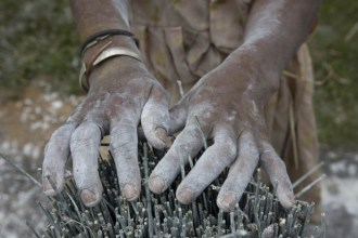 White hands covered in the clay that dries and hardens the mahampy reeds used for weaving fencing and the manufacture of baskets and mats.