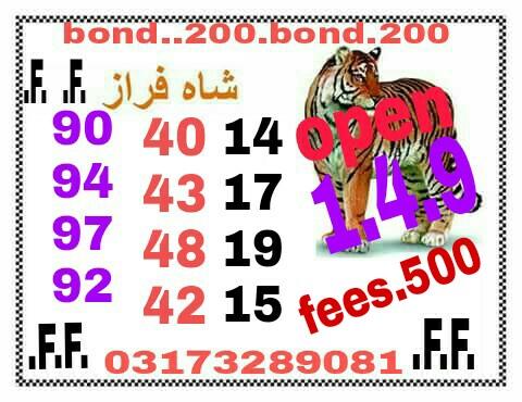 Shah Faraz 200 Prize bond Guess Papers