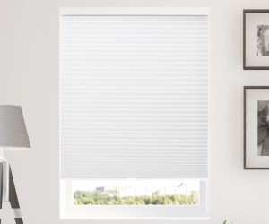 Chicology Cordless Cellular Shades Review