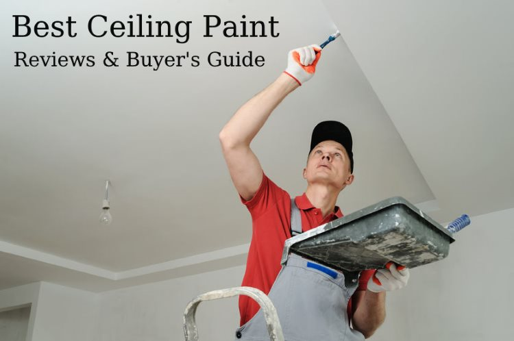 Best Ceiling Paint Reviews and Buyer's Guide