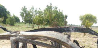 Boko Haram vehicle destroyed by Nigerian troops