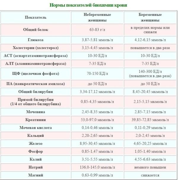 Биохимический анализ крови: расшифровка у беременных ...