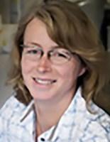 Katrin Fibich
