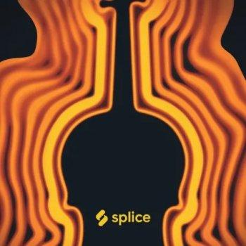 Сэмплы Splice Sounds Originals Flutopia Soul Flutes