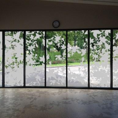 Films pour vitres Feuillages