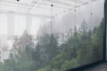 Tissus adhésifs Squid Deco- Forest mist
