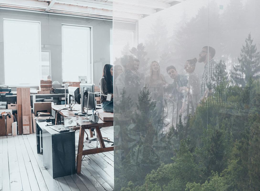 Tissus adhésifs Squid Deco - Forest mist