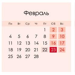 Выходной на День защитника отечества 23 февраля 2019 перенесен на 10 мая 2019 года, в феврале 20 рабочих дней, 7 выходных и 1 праздничный день