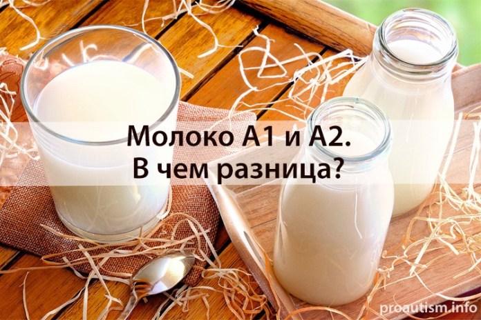 Молоко А1 и А2. В чем разница