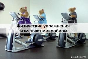 Физические упражнения изменяют микробиом